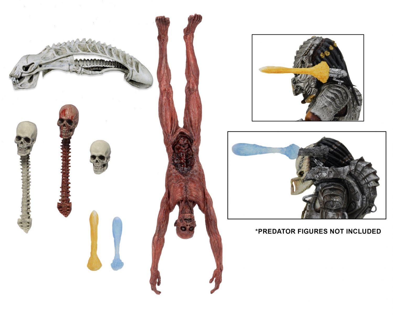 NECA Previews Upcoming Predator Figures Coming To San Diego Comic-Con