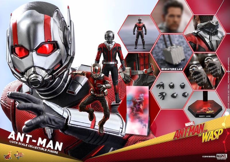 Hot Toys Ant-Man Movie – Ant-Man & Wasp Sixth Scale Figure Pre-Orders