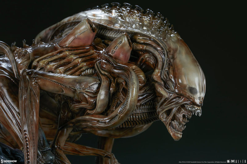 Sideshow Collectibles Alien Warrior Mythos Maquette Pre-Orders